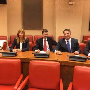 El Diputado en Cortes por Toledo Ramón Luis Molinary, formará parte de la Comisión Legislativa de Fomento, Infraestructuras y Vivienda en el Congreso.