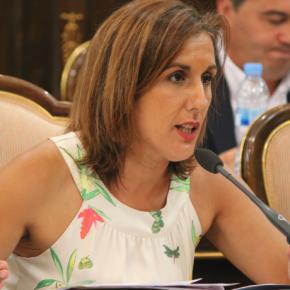 La Diputación instará a la Junta a crear un plan presupuestado para garantizar la igualdad de oportunidades de acceso al mercado laboral a personas con diversidad funcional.