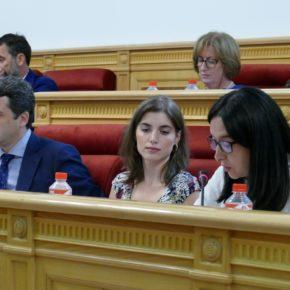 El Pleno aprueba la moción de Cs para mejorar los patios de los colegios públicos