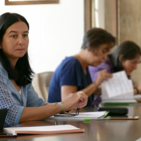 """Araceli de la Calle: """"El Plan de inversiones 2017 debería haber pasado por los consejos de participación para su estudio y debate previo"""""""