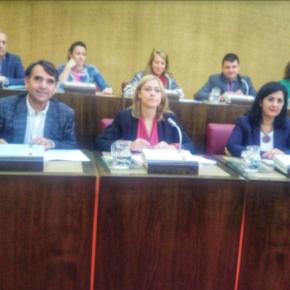 Ciudadanos apremia al Ayuntamiento de Albacete para que habilite cuanto antes la 'Red de itinerarios urbanos saludables'