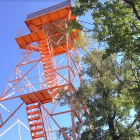 Cs pide al equipo de Gobierno que reconsidere su negativa a elaborar un plan municipal para la prevención de incendios forestales