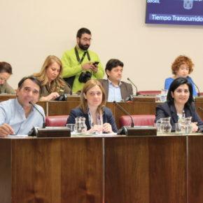Ciudadanos saca adelante, pese a la negativa del PP, una moción para impulsar la ordenanza sobre tenencia de animales