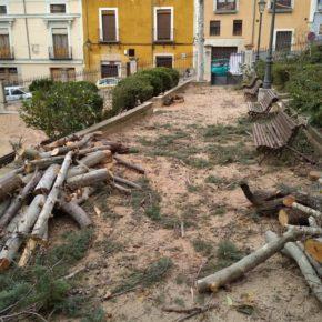 Cs lamenta la tala de árboles y la inactividad del Consejo de Medio Ambiente durante la legislatura