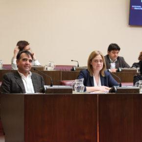 Ciudadanos se abstiene en la votación de los presupuestos del Ayuntamiento de Albacete para 2019