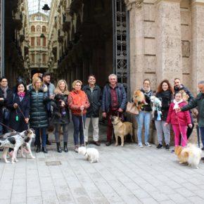 Ciudadanos endurecerá las penas para quienes abandonen, torturen o maltraten a animales