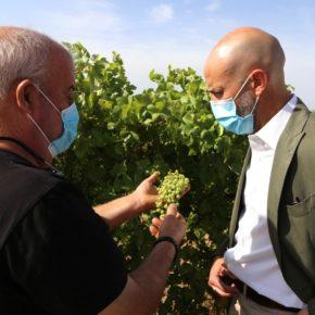 """Zapata y Comendador valoran el papel """"absolutamente clave"""" del sector vitivinícola"""