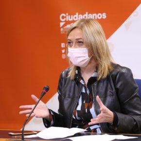"""Picazo (Cs): """"El mejor regalo de Reyes que el PSOE puede hacerle a los autónomos es no subirles la cuota"""""""