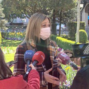Ciudadanos pedirá este jueves en las Cortes actualizar el Plan de Salud Mental para hacer frente a los efectos de la pandemia